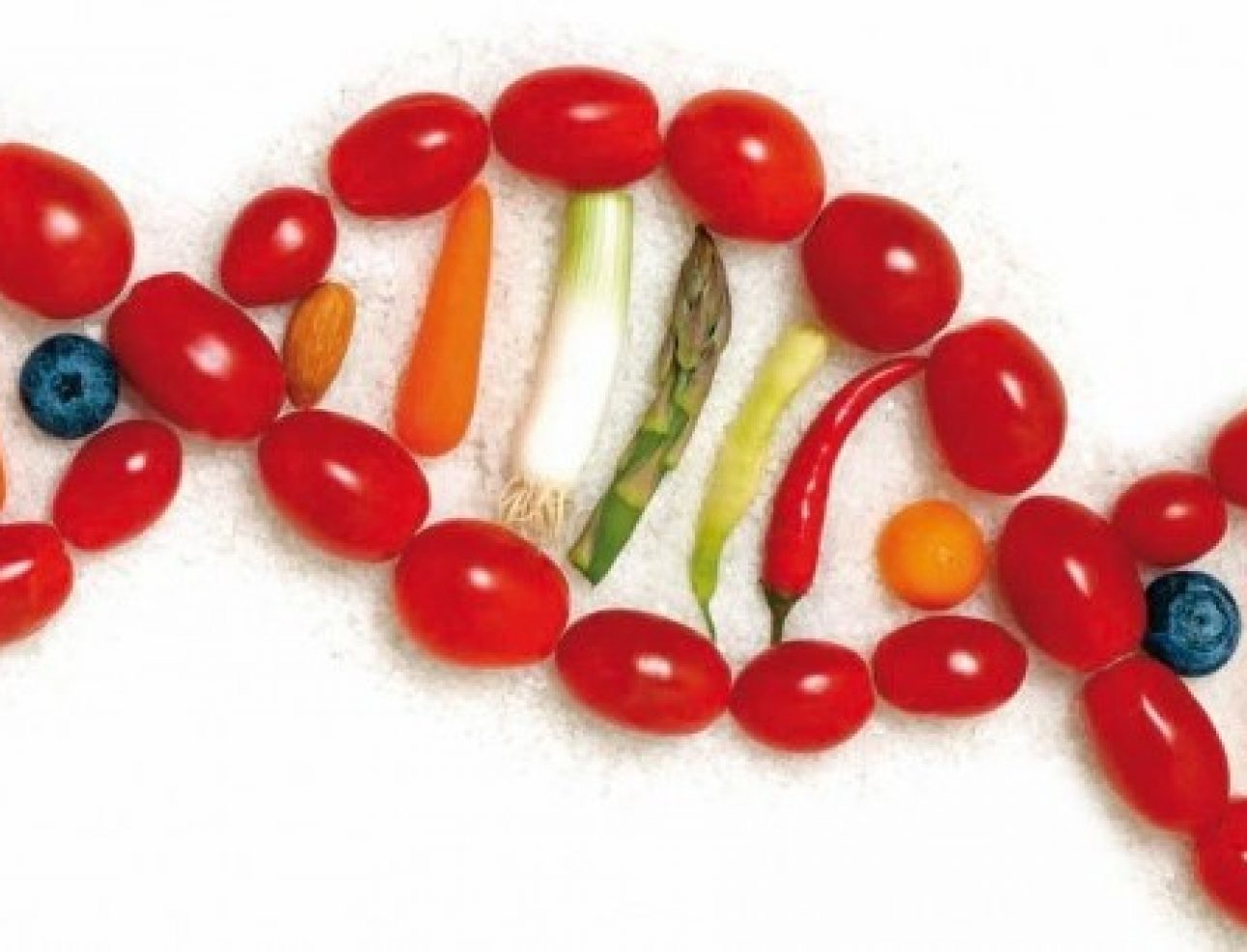 nutrigenética 3